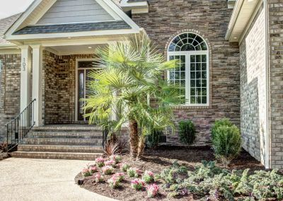 Double Palm Tree, Stone Accents